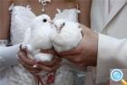 Блистательная свадьба в замке Карлштейн