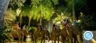 Бали, отдых с детьми