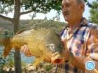 Рыбалка в устье реки Эбр  ( Речная Рыбалка)