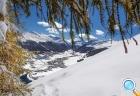 Новый Год для всей семьи на снежных склонах Италии!